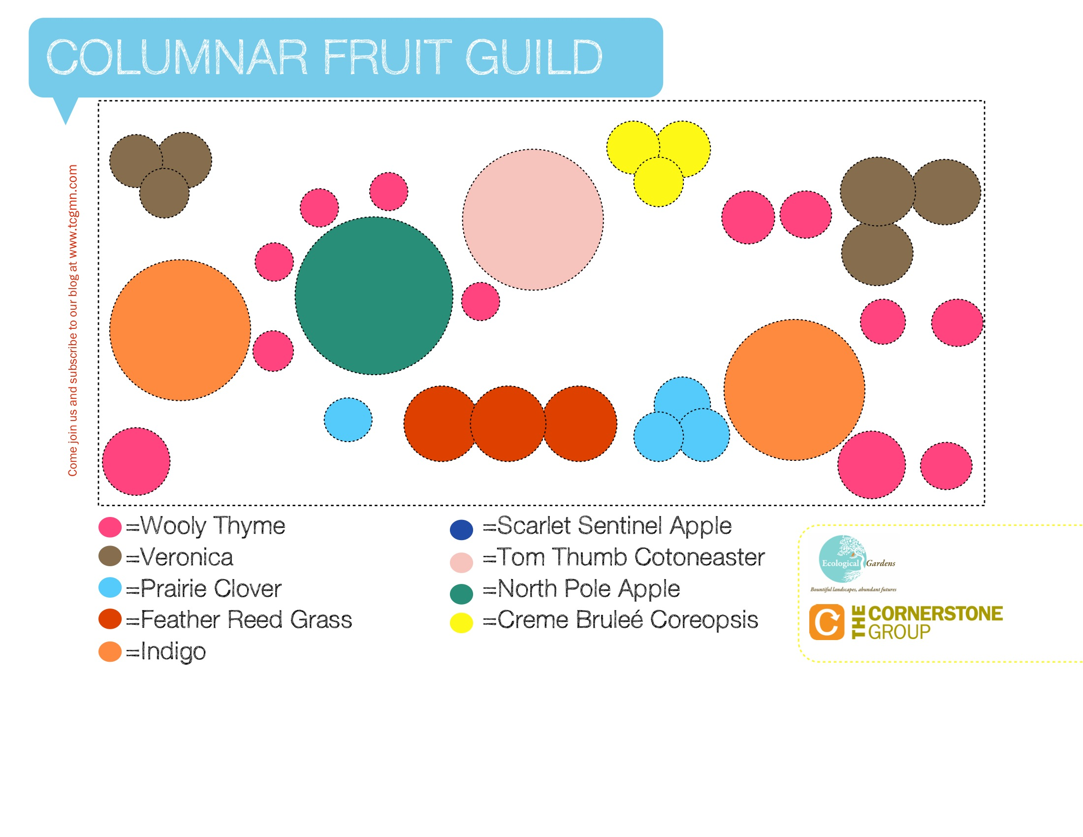 columnar-fruit-guild-2