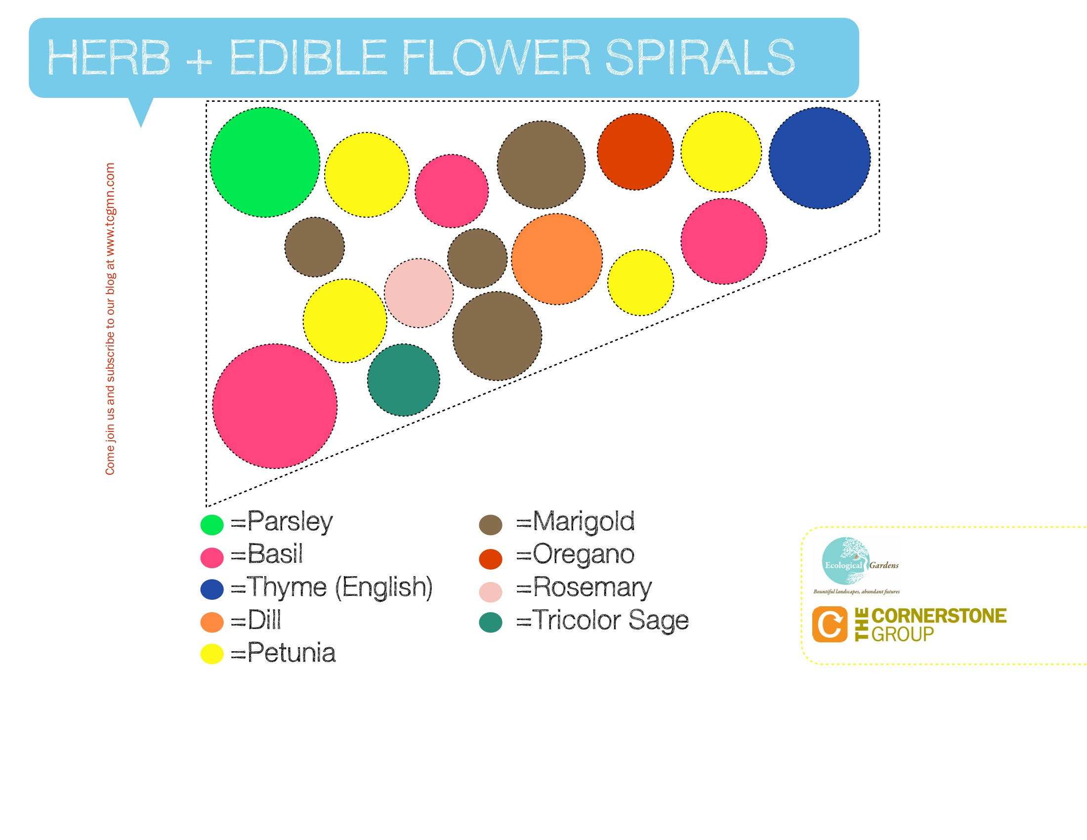 herb-edible-flower-spirals